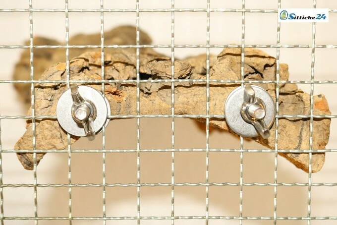 Das Korksitzbrett mit Edelstahlbefestigung lässt sich leicht an Ihrem Vogelkäfig befestigen und ist ganz Gewiss eine gesunde Alternative zu Plastik und Kunstoffspielzeug. Das Vogelsitzbrett ist versandfertig etwa für Essen, Flensburg, Limburg oder Heidelberg.
