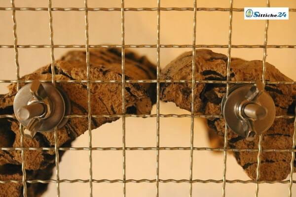 Vogelsitzbrett aus gesundem Naturkork für Ihren Vogelkäfig oder Ihre Voliere mit Edelstahlbefestigung - versandfertig für Sie zu Hause in München, Fürth, Ulm oder Aschaffenburg.