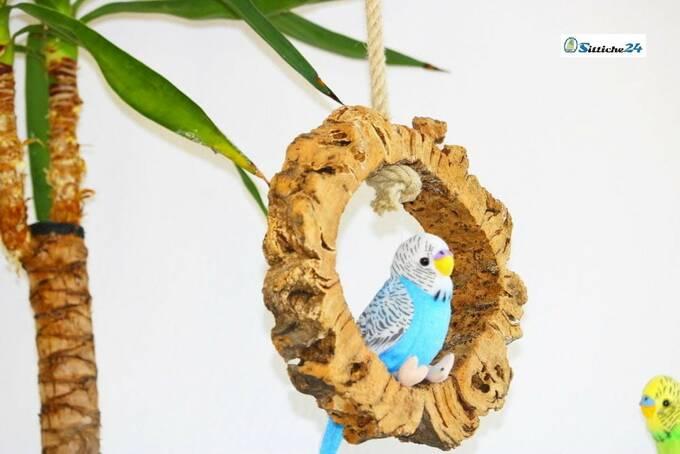 Gesundes Vogelzubehör für Agaporniden.
