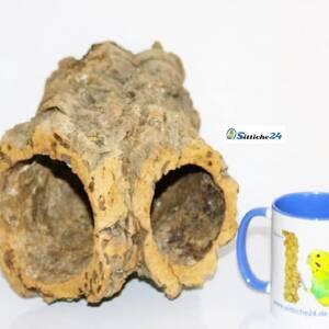 Degu Käfig Ausstattung. Korkröhren sind für eine Käfigausstattung für Degus sehr zu empfehlen. Korkröhren bieten sicheren Unterschlupf und sorgen für tägliche Abwechslung im Nagerkäfig und Gehege. Korkröhren befriedigen den Nagetrieb Ihrer Degus und durch die facettenreiche Oberflächenstruktur einer Korkröhre fühlen sich Ihre Degus wie auf einem kleinen Abenteuerspielplatz.