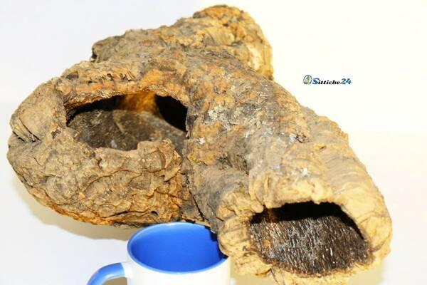 Vögel, Nager und Reptilien schätzen Korkröhren aufgrund seiner einzigartigen Eigenschaften. Kork ist absolut feuchtigkeitsbeständig und hält warm. Korkröhren bieten perfekte Kletter- und Schutzmöglichkeiten.