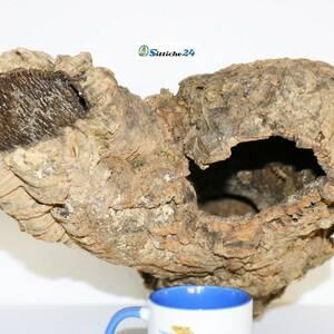 Röhren Kork. Korkröhren garantieren tolle Versteck- und Unterschlupfmöglichkeiten und sind aus Terrarien und Nagerkäfigen kaum mehr weg zu denken. Vogelfreunde schätzen Kork ebenfalls als Ausstattung für Vogelkäfige und Volieren.