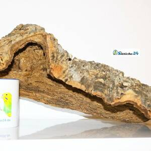 Vogelspinne Terrarium Zubehör. Korkröhren sind durch Ihre Oberflächenstruktur ideales Klettermaterial für Vogelspinnen. Korkröhren bieten perfekte Unterschlupf- und Versteckmöglichkeiten.