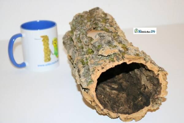Ausstattung Bartagame Terrarium. Korkröhren sind exzellent geeignet für Bartagame, sie ruhen gerne auf Baumstämmen oder Baumstümpfen. Kork bietet ebenfalls tolle Unterschlupf- und Klettermöglichkeiten.