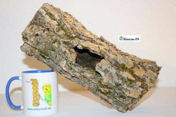 Ausstattung Chamäleons Terrarium. Korkröhren sind perfekt für Terrarien mit Chamäleons geeignet, denn klassisch ist der Körper von Chamäleons für ein Leben in den Bäumen ausgerichtet.
