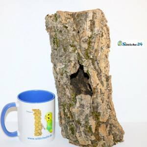 Ausstattung Geckos Terrarium. Korkröhren und Korktunnel eignen sich hervorragend für die meist dämmerungs- oder nachtaktiven Tiere und bieten tolle Unterschlupf- und Klettermöglichkeiten.