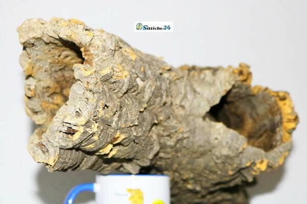 Käfig Chinchillas einrichten. Kork ist ausgezeichnet für Chinchillas geeignet, da es Ihrer natürlichen Umgebung in gebirgigen aber auch grasbewachsenen Regionen ähnelt. Als Unterschlupf dienen ihnen Höhlen und Felsspalten.