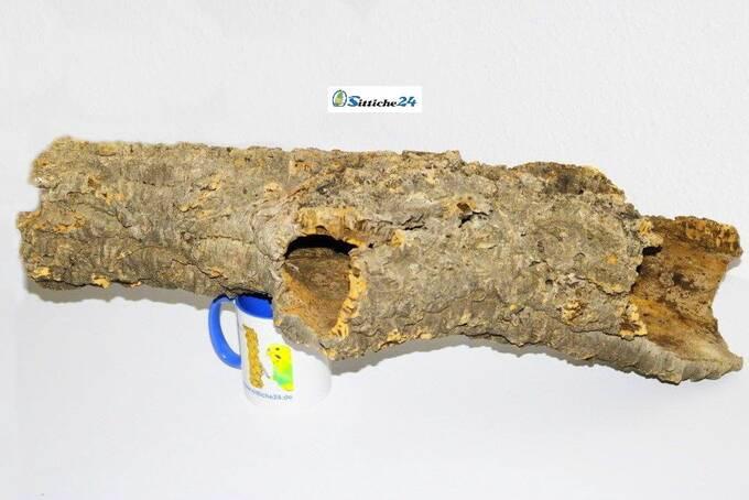 Käfig Goldhamster einrichten. Korkröhren bieten Goldhamstern wichtige alternative Tunnelsysteme, die sie in Ihrer natürlichen Umgebung unterirdisch meist auf fruchtbarem Ackerland in den Grenzgebieten von Syrien und der Türkei bewohnen.