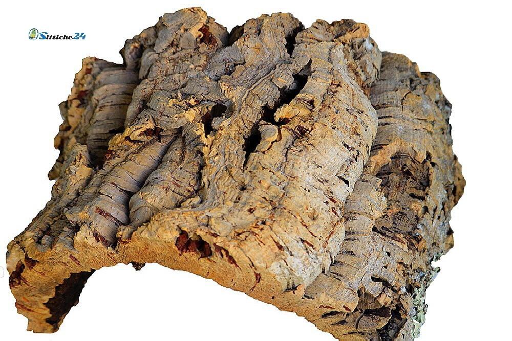 Terrarium einrichten. Kork Tunnel eigenen sich ausgezeichnet als Unterschlupf und Versteck für Spinnen, Echsen oder Geckos. Kork ist weich und hält warm durch seine isolierende Wirkung.