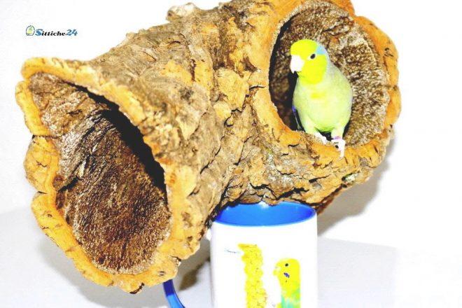 Vogel Haltung. Vogelschaukeln aus Kork, Korksitzbretter oder Korkröhren sind hervorragend für die Ausstattung von Vogelkäfigen, Volieren und Freizimmer geeignet. Kork ist einzigartig und ideales Zubehör in der Vogel Haltung.