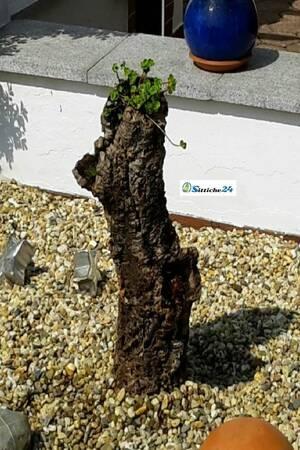 Kork Deko für den Garten