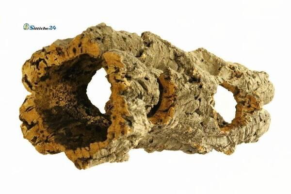 Was brauchen Goldhamster? Korkröhren und Korktunnel sind für Goldhamster sehr gute Käfigausstattung. Die Nager bewohnen naturbedingt unterirdische Höhlen in Erdbauten auf meist fruchtbaren Äckern in den Grenzgebieten Syriens und der Türkei. In freier Wildbahn können die Tunnelsysteme von Goldhamstern bis zu 9 Meter erreichen. Heute zählt der Goldhamster mit zu den häufigsten Heimtieren in Deutschland.