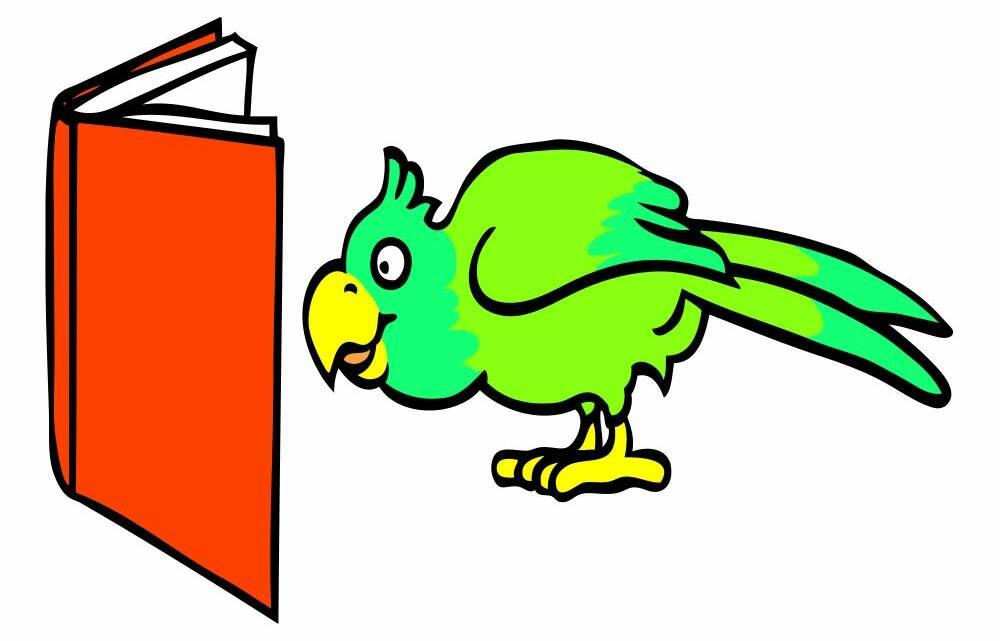 Wissenswertes über Reptilien, Nager und Vögel. Lebenshaltung der Tiere. Naturkork für Vögel, Nager und Reptilien.