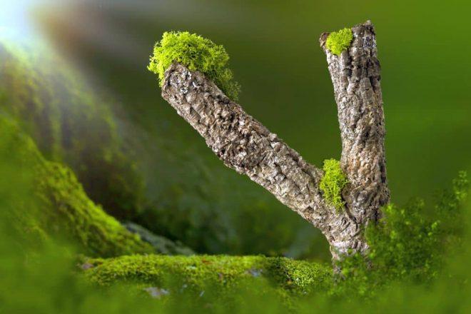Naturkork Deko. Reiner Kork eignet sich prima zur Dekoration - nicht nur als Eyecatcher innerhalb der Wohnung - auch für Gärten und Teiche!